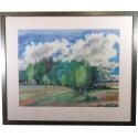 Günter Grass / Landschaft mit Birken / handsigniert / Galerierahmung